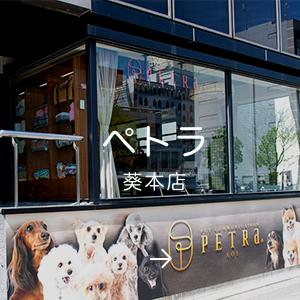 ペトラ 葵本店